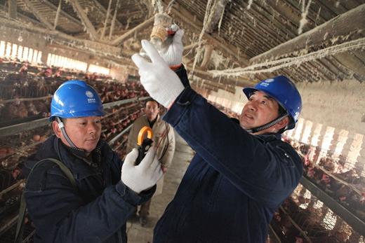 长垣县供电公司:入户走访 提升服务