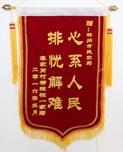 来自郑州大学的锦旗