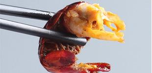 飙升的不只气温 小龙虾价格飙升每斤涨价约10元