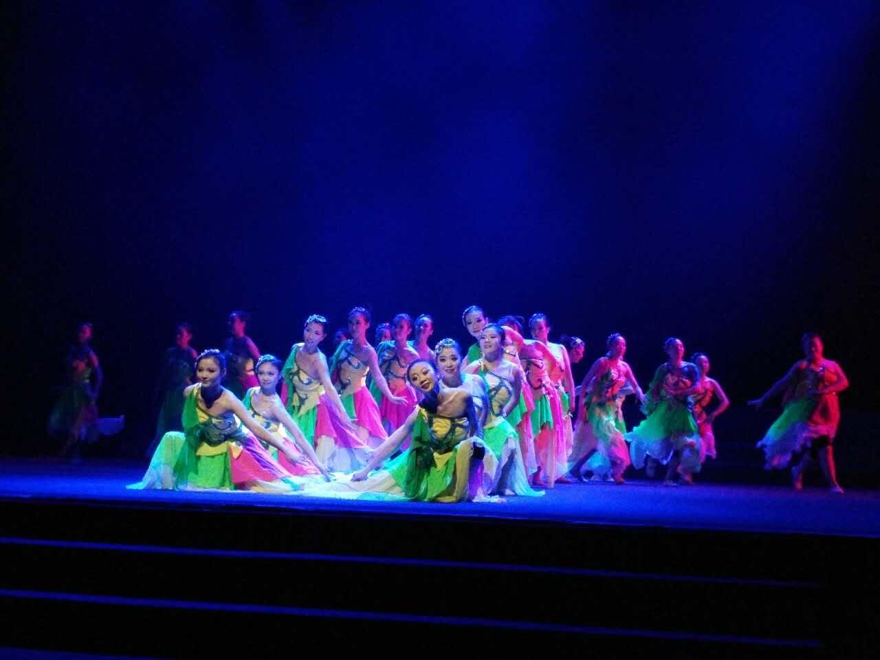 河南职教舞蹈表演专业双师型教师培训收官
