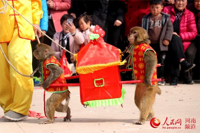 河南一传统村落举办古庙会 猴戏成亮点