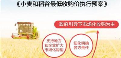 今年小麦和稻谷怎么收? 今年小麦和稻谷怎么收?粮农该怎么卖?和往年相比,今年小麦和稻谷最低收购价政策有哪些特点?
