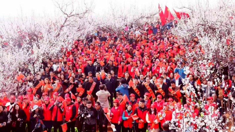 渑池县:万亩杏花林里千人齐唱祝福祖国