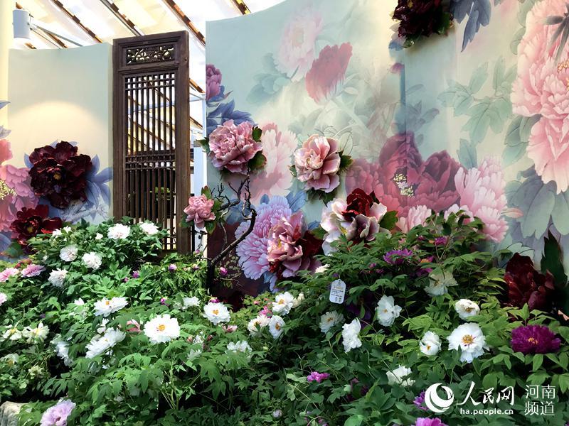 """特色花卉、灿烂文明 北京世园会迎来""""河南日"""""""
