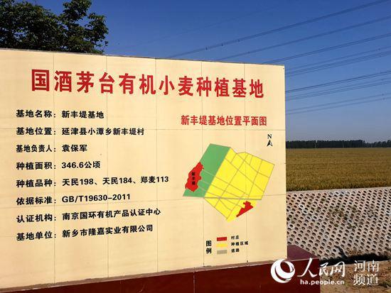 河南:肥千里沃野、助种粮满仓 扛稳粮食生产安全重任