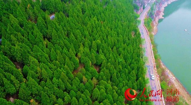 九旬老人靳月英:35年走遍太行栽下20万棵树
