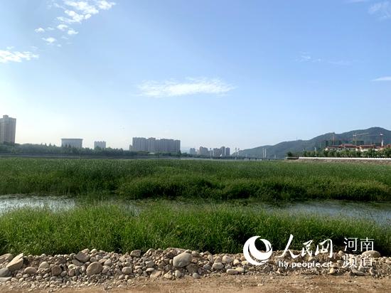 西峡将生态文明融入城市建设 为美丽新山城注入更多活力