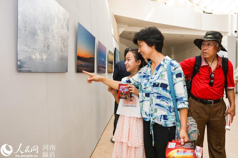 天鹅生态系列作品展郑州开展 将持续到15日