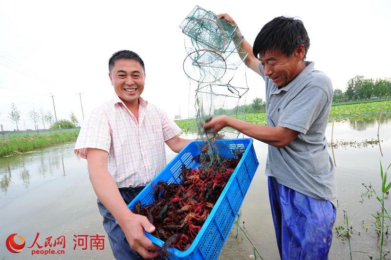 濮阳范县:母亲河畔唱起幸福歌