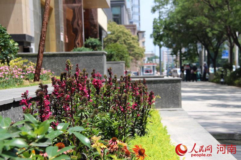 可阅读、可流传、可观赏 郑州经三路悄然蝶变
