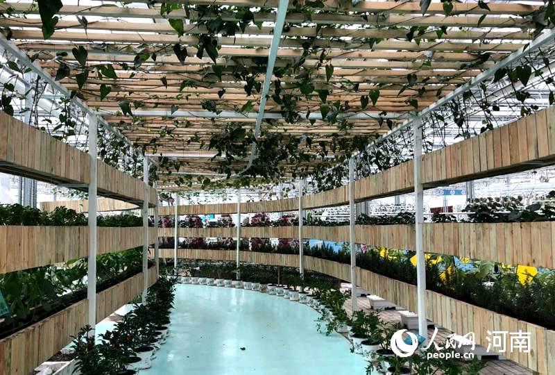 2020年中国农民丰收节将在河南开封举行