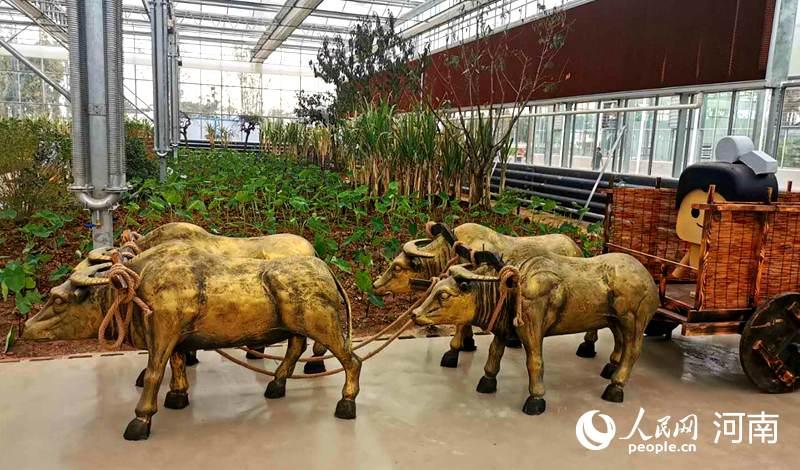 """""""庆丰收,迎小康"""" 2020年中国农民丰收节将在开封举行"""