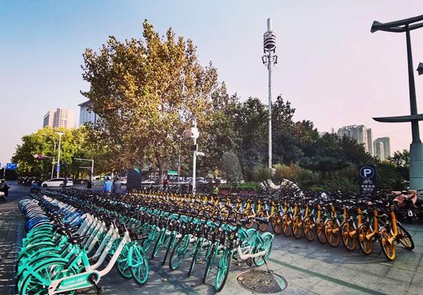 """郑州市未来路街道开启共享单车""""一家亲""""运维模式"""