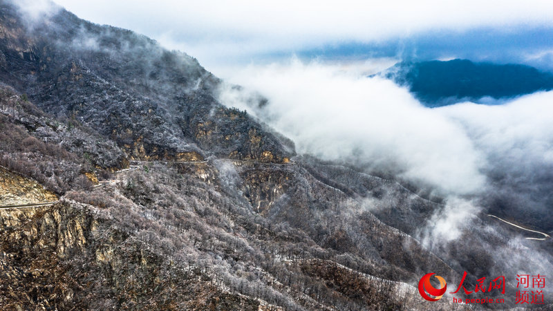洛阳白云山:云海缥缈 雪山壮观