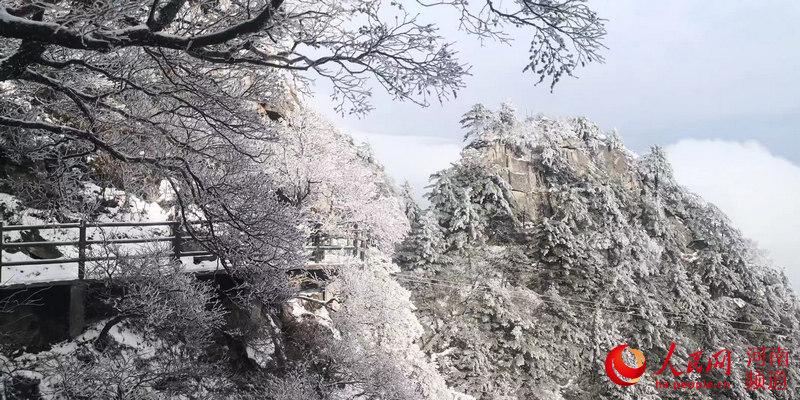 河南鲁山:雪景美如画