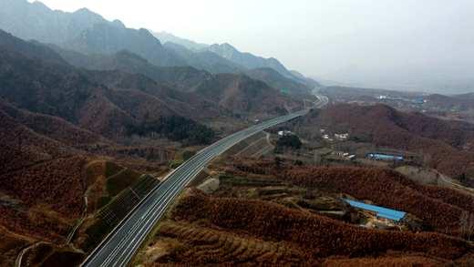 """河南嵩县:冬季植""""绿廊"""" 让云中高速变的更美更靓"""