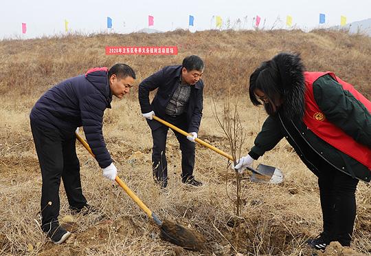 平顶山卫东区2020年冬季义务植树活动
