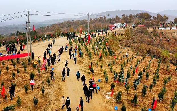 南阳市2020年冬季义务植树活动在卧龙区举行