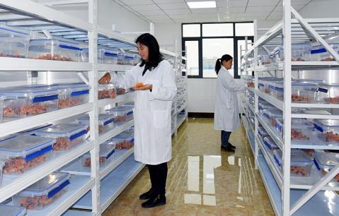 减负增资 解难纾困 南召县优化营商环境让企业舒心经营