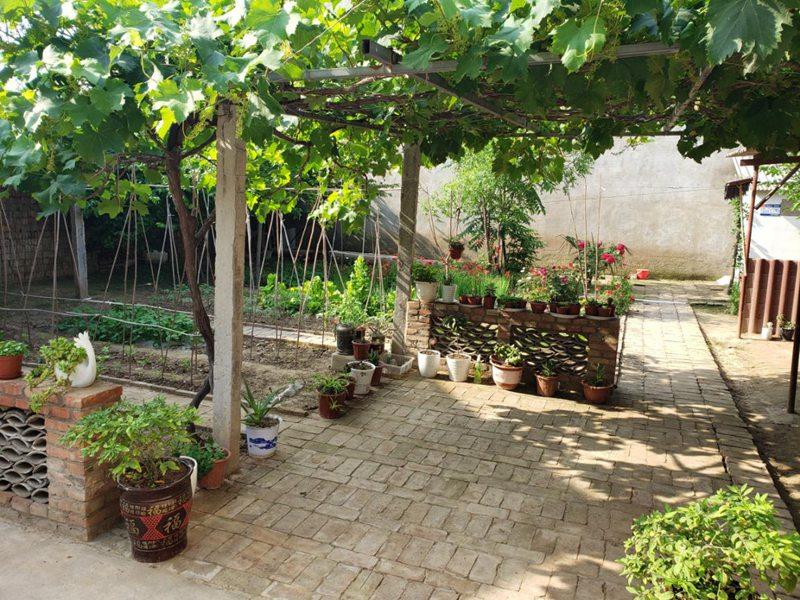 杞县:美丽庭院靓起来 乡村振兴富起来