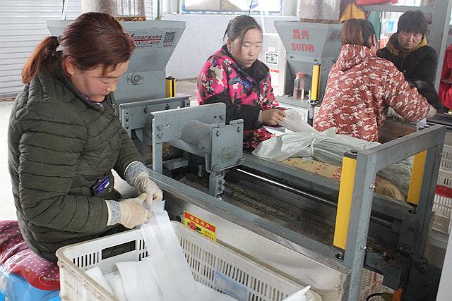 鲁山县团城乡:食用菌产业园架起群众致富路