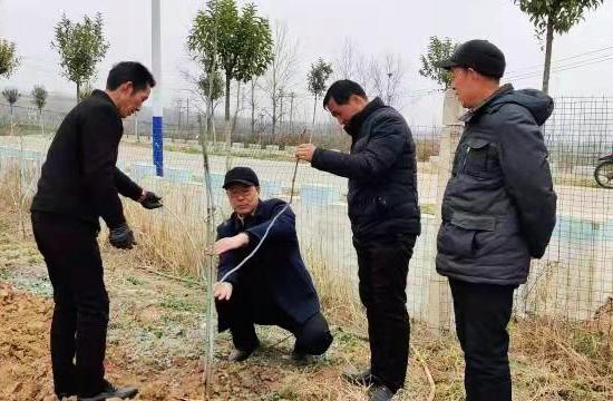 """叶县:71名科技特派员下乡送""""智""""战""""贫"""""""