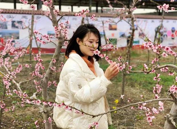 河南叶县第四届桃花节开幕 千亩桃花竞相绽放