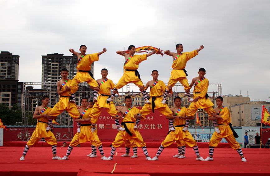 鲁山县第二届传统武术文化节举行