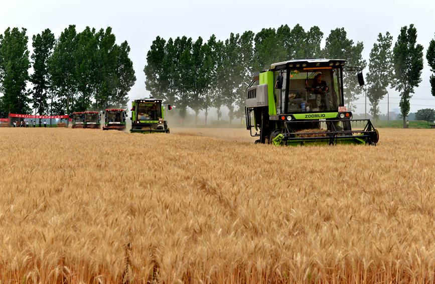 汝州:农机服务到一线 三夏生产有保障