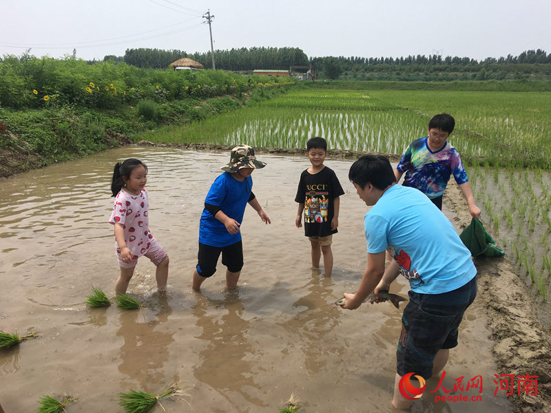提升环保意识 郑州市生态环境局开展美丽乡村建设研学活动