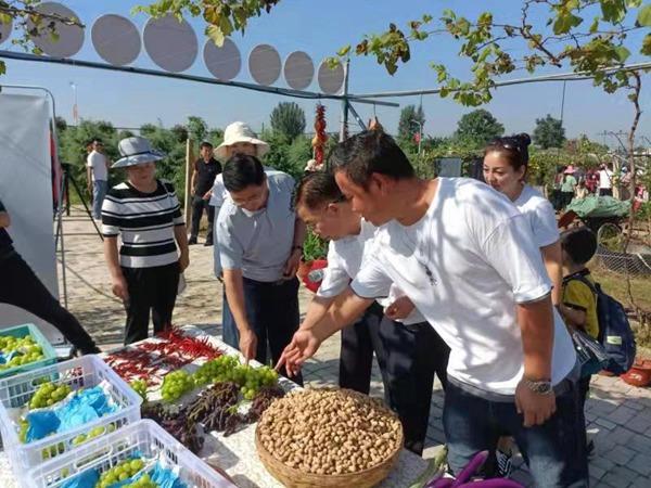 平顶山高新区举办中国农民丰收节系列活动