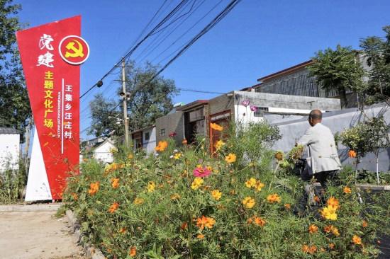 郏县:发展农业产业 带动村域经济发
