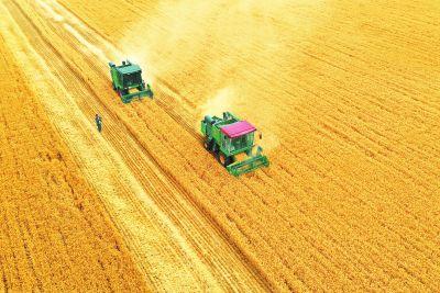河南:多彩田园让农民挑稳金扁担